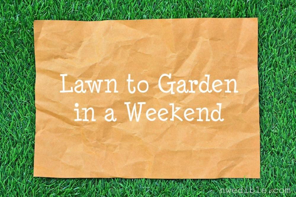Lawn-to-Garden34-1024x683.jpg